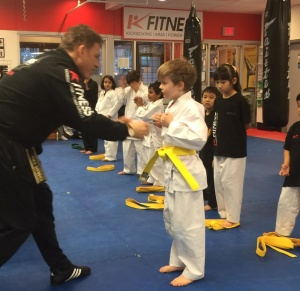 Martial arts Kickboxing MMA kids Age Group Learning Abilities